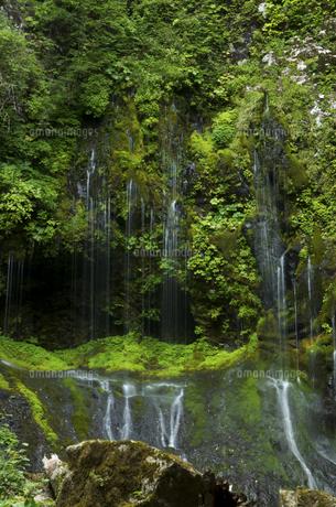 不易の滝の写真素材 [FYI04769355]