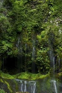 不易の滝の写真素材 [FYI04769356]