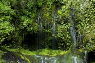 不易の滝の写真素材 [FYI04769357]
