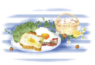 洋風の朝食セットと卵とハーブのイラスト素材 [FYI04769364]