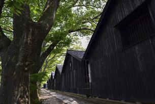 山形県酒田市 山居倉庫の写真素材 [FYI04769531]