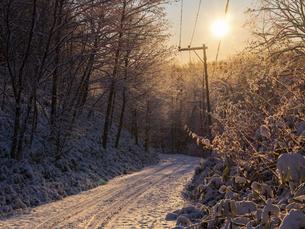 冬の道の写真素材 [FYI04769642]