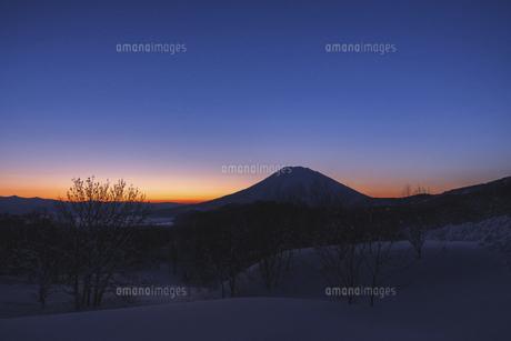 夜明けの羊蹄山の写真素材 [FYI04769799]