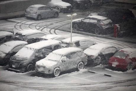 春雪に覆われた車たちの写真素材 [FYI04769876]