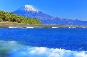 三保の松原より冠雪の富士山の写真素材 [FYI04769971]
