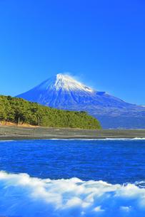 三保の松原より冠雪の富士山の写真素材 [FYI04769972]