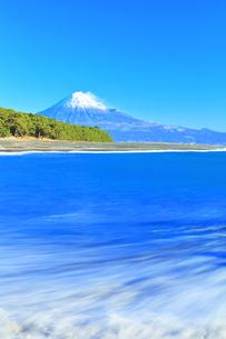 三保の松原より冠雪の富士山の写真素材 [FYI04769973]