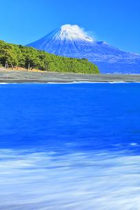 三保の松原より冠雪の富士山の写真素材 [FYI04769974]