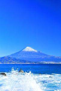 三保の松原より冠雪の富士山と鵜の写真素材 [FYI04769976]