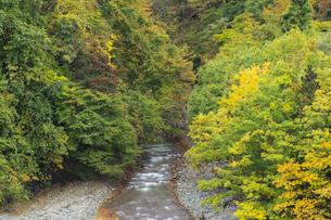 松川渓谷の写真素材 [FYI04770007]