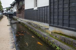 瀬戸川と白壁土蔵街の写真素材 [FYI04770027]