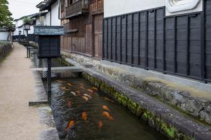 瀬戸川と白壁土蔵街の写真素材 [FYI04770029]
