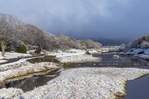 北大路橋からの賀茂川雪景色の写真素材 [FYI04770083]