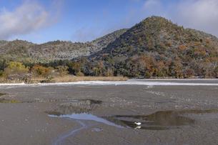 広沢池 雪景色の写真素材 [FYI04770092]