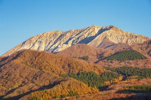 鬼女台展望休息所より望む朝日の当たる大山の写真素材 [FYI04770112]