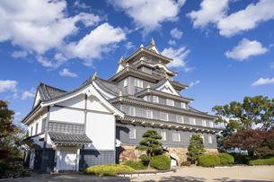岡山城の写真素材 [FYI04770121]