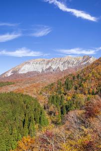 秋の大山の写真素材 [FYI04770125]