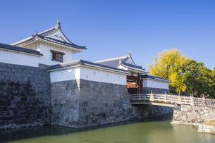 駿府城公園の東御門の写真素材 [FYI04770161]