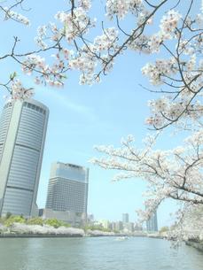 春の大阪アメニティパークの写真素材 [FYI04770173]