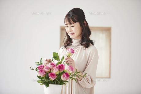 花を活ける女性の写真素材 [FYI04770237]