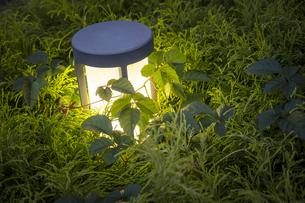垣根内で灯る外灯の写真素材 [FYI04770631]