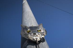 猫の顔をあしらった防犯グッズの写真素材 [FYI04770653]