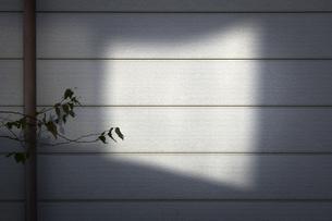 隣家の壁に映る窓の照り返しの写真素材 [FYI04770681]