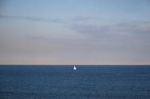 水平線と浮かぶ白いヨットの写真素材 [FYI04770688]