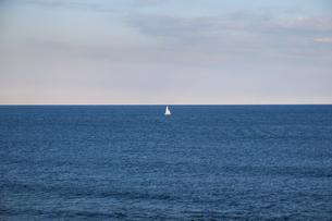 水平線と浮かぶ白いヨットの写真素材 [FYI04770689]