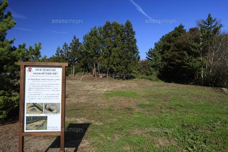 亀ヶ岡石器時代遺跡 台地北側の竪穴住居跡・貯蔵穴の写真素材 [FYI04770840]
