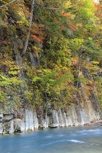 紅葉の松川渓谷の写真素材 [FYI04770882]