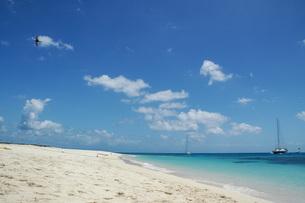 美しいグレートバリアリーフの島の写真素材 [FYI04770933]
