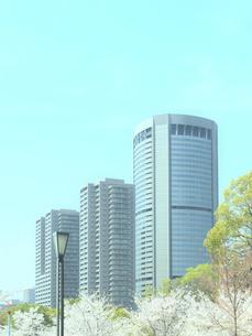 超高層ビルと桜と街灯の写真素材 [FYI04770942]