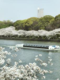 遊覧船と桜の写真素材 [FYI04770945]