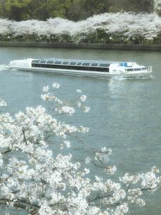 遊覧船と桜の写真素材 [FYI04770946]