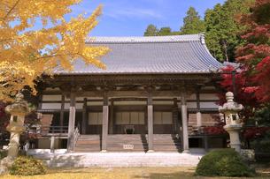 11月 紅葉と銀杏の東光寺の写真素材 [FYI04771208]