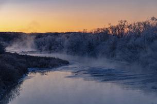 北海道冬の風景 阿寒郡鶴居村の樹氷と気嵐の写真素材 [FYI04771409]