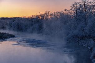 北海道冬の風景 阿寒郡鶴居村の樹氷と気嵐の写真素材 [FYI04771410]
