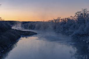北海道冬の風景 阿寒郡鶴居村の樹氷と気嵐の写真素材 [FYI04771411]