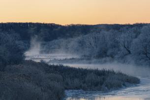 北海道冬の風景 阿寒郡鶴居村の樹氷と気嵐の写真素材 [FYI04771414]