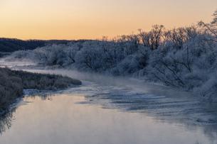 北海道冬の風景 阿寒郡鶴居村の樹氷と気嵐の写真素材 [FYI04771418]