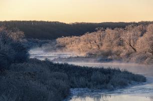 北海道冬の風景 阿寒郡鶴居村の樹氷と気嵐の写真素材 [FYI04771425]