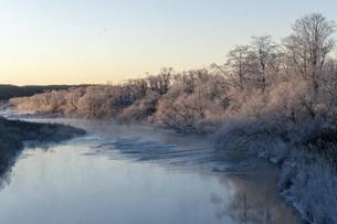 北海道冬の風景 阿寒郡鶴居村の樹氷と気嵐の写真素材 [FYI04771426]