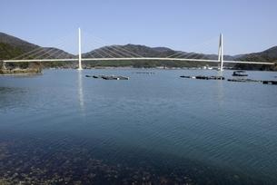 舞鶴湾に架かる舞鶴クレインブリッジとカキ養殖の写真素材 [FYI04771498]