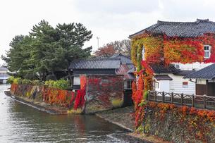 色鮮やかな紅葉を見る川沿いの建物の写真素材 [FYI04771537]