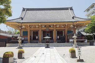 6月 壬生寺  -京都における新選組関連の史跡-の写真素材 [FYI04771693]