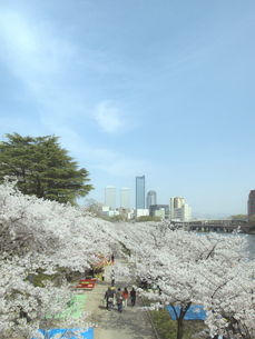 大阪ビジネスパークと桜と道の写真素材 [FYI04772042]