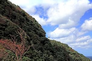 京都府 京丹後市  白い建物が印象的な秋の経ケ岬灯台の写真素材 [FYI04772073]