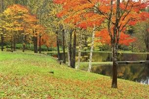 羊蹄山自然公園の写真素材 [FYI04772518]