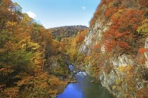 紅葉の定山渓の写真素材 [FYI04772530]